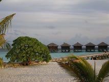 Maldivian wrażenie Fotografia Royalty Free