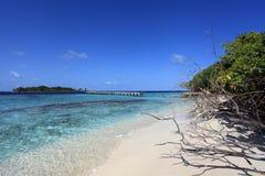 Maldivian wyspa Zdjęcie Royalty Free