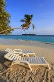 Maldivisk ö Royaltyfria Bilder