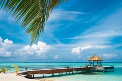 Maldiviskt hus Royaltyfri Bild
