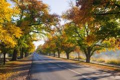 Maldon en automne Photos stock