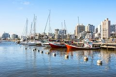 Red Fishing Boats in Punta del Este harbor, Uruguay. Maldonado, September 5, 2017: Classic Red Fishing Boats moored in front of the yachts of the rich people in Stock Images
