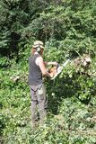 Male Arborist using a chainsaw cutting up a fallen tree. Male Tree Surgeon using a chainsaw stock photo