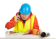 Male architect with blueprint Stock Photography