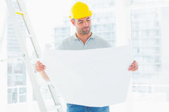 Male architect reading blueprint in office Royalty Free Stock Photo