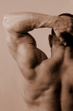 Male arm and back Royalty Free Stock Photography