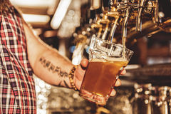 Male arm filling cup of beer Stock Images
