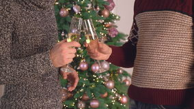 Male arm holds wineglass chin-chin. Two men at new year party standing near near christmas tree. Man hands holding a glass of champagne. Close up details stock video