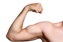 The male arm isolated on white Stock Image