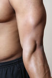 Male arm muscles Stock Images