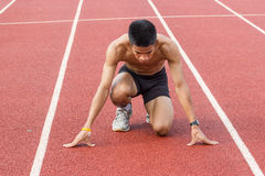 Male athlete all set before race starts. Royalty Free Stock Photo