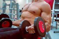Male athlete doing biceps exercise with dumbbells. Bodybuilder trains biceps with dumbels. Fitness and crossfit concept. Close-up Royalty Free Stock Photo