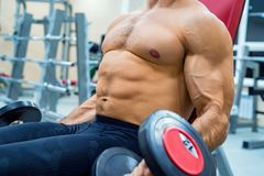 Male athlete doing biceps exercise with dumbbells. Bodybuilder trains biceps with dumbels. Fitness and crossfit concept. Close-up Royalty Free Stock Photos