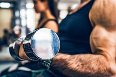 Male athlete doing biceps exercise with dumbbells. Bodybuilder trains biceps with dumbels in gym. Fitness and crossfit concept. Close-up Royalty Free Stock Photos