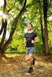 Male athlete jogging on a trail Stock Images