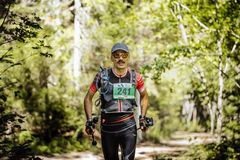 Male athlete midlife age runs in woods with nordic poles in hand Royalty Free Stock Photography