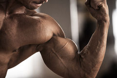 Male athlete showing biceps Royalty Free Stock Images