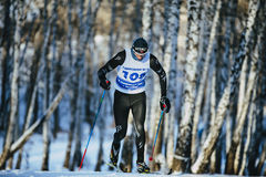 Male athlete skiers race in winter forest classic style riding uphill Stock Image