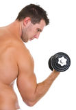 Male athlete with strong biceps rising dumbbell Royalty Free Stock Photography