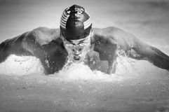 Male Athlete Swims In A Butterfly Style. Black and white image of a competitive male participant swimming in a butterfly style Stock Photo