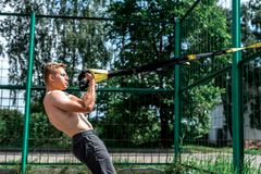 Male athlete, trains in fresh air, summer trx training, Balance motivation, tanned skin in shorts. Royalty Free Stock Photography
