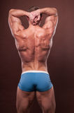 Male back. Muscled male model showing his back Stock Photo