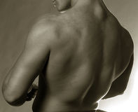 Male back. Sepia male back Royalty Free Stock Images
