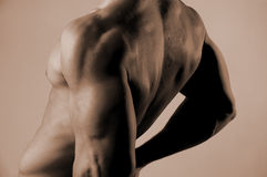 Male back. Duotone male back Royalty Free Stock Images