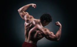 Male back Royalty Free Stock Photo