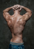 Male back. Muscled male model showing his back Stock Image