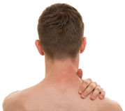 Male Back Neck Ache isolated on white - REAL Anatomy Royalty Free Stock Photo