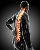Male back pain Royalty Free Stock Image