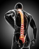 Male back pain Royalty Free Stock Photography
