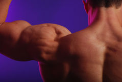 Male back and shoulders. Male shoulders and back flexing Stock Photos