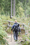 Male backpacker hiking in mountain forest with hike sticks. acti Stock Images