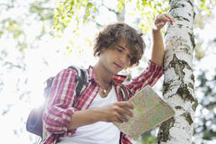 Male backpacker reading map while leaning on tree trunk in forest Royalty Free Stock Images