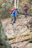 Male backpackers hiking in forest Royalty Free Stock Images