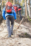 Male backpackers hiking in forest Royalty Free Stock Photography
