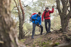 Male backpackers hiking in forest Stock Photos