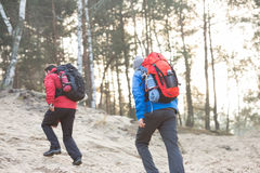 Male backpackers walking in forest Stock Images