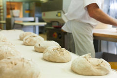 Male baker baking bread. Male baker baking fresh bread in the bakehouse Royalty Free Stock Images