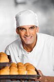 Male Baker Holding Fresh Breads In Baking Tray Royalty Free Stock Images