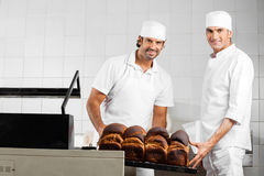 Male Baker's Packing Bread Loaves In Bakery Royalty Free Stock Image