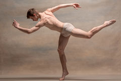 The male ballet dancer posing over gray background.  stock image