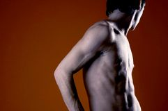 Male, Bare Chested Stock Photography