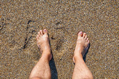 Male bare feet standing on wet sandy beach. Male bare feet standing on the wet sandy beach Stock Photography