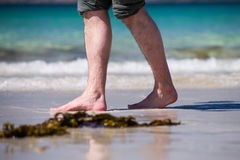 Male bare feet in a warm sand. Man taking a walk on a sunny beach with turquoise water during vacation stock photos