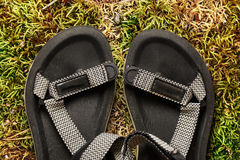 Male beach sandals on moss background. Closeup Royalty Free Stock Photos