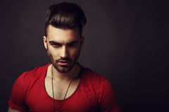 Male beauty portrait Royalty Free Stock Photography