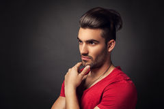 Male beauty portrait Stock Images